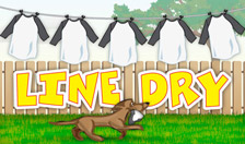 Line Dry - Game
